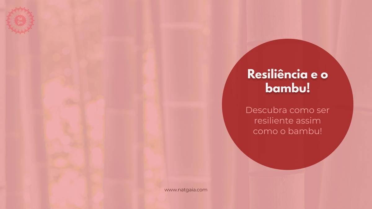 Read more about the article Resiliência e o bambu!