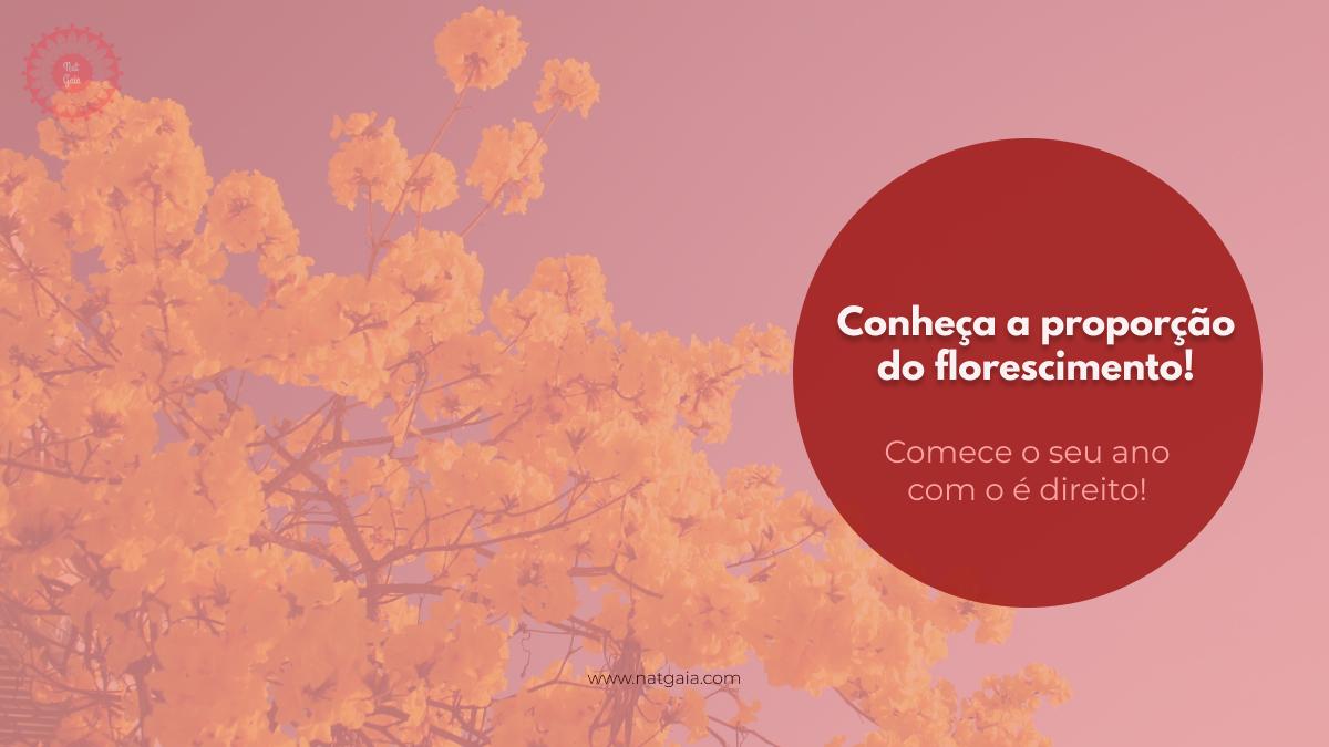 Read more about the article Conheça a proporção do florescimento